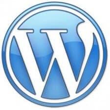 Wordpress Blogs SEO Tips