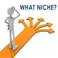 Choose blog niche