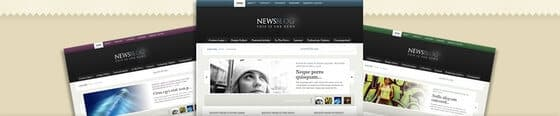 eNews WordPress Theme