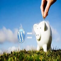 Monetizing WordPress Blog