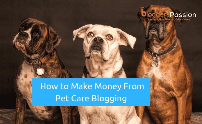 pet care blogging