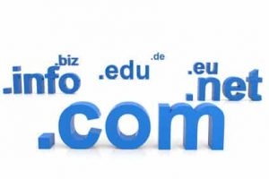 Domain Name Expiration Services