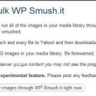 WP Smush.it Plugin: Reduced Image Sizes for Faster Loading Blogs