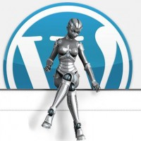 Wp Robot Plugin