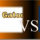 Hostgator vs Bluehost: Why Hostgator Dwells Over The Rest