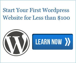 WordPress Website for Less than $100
