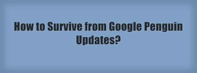 survive from google penguin update