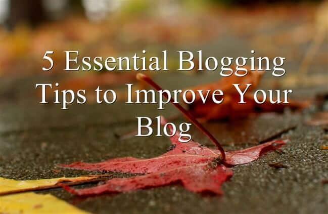 essential blogging tips