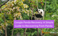 Google Panda Recovery: A Simple Guide to Recovering from Panda Penalty