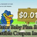 Hostgator Baby Plan Review with 25% Discount Coupon