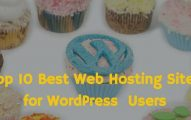 Top 10 Best Web Hosting Options for WordPress Bloggers In 2019