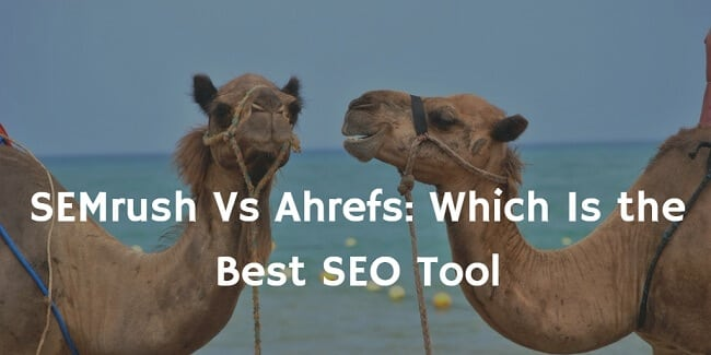 semrush vs ahrefs review