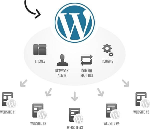 pros wordpress