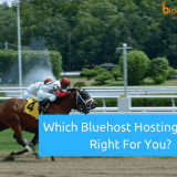 Which Bluehost Hosting Plan Is Best In 2019: Basic, Plus Or Prime?
