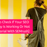 How to Check If Your SEO Strategy Is Working [A Tutorial With SEMrush]