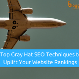 Top 10 Gray Hat SEO Techniques to Quickly Uplift Your Website's Rankings In 2018