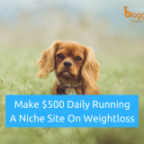 Make $500 Daily Running a Niche Site on Weightloss