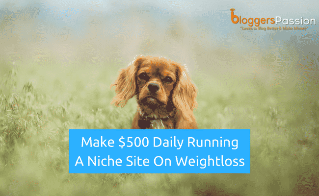 Make money from niche site on weightloss in 2018