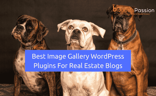 Image Gallery WordPress Plugins