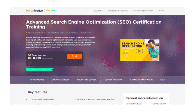 market motive seo certification