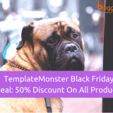 Template Monster Black Friday 2018 Deal: 50% Discount On All Products