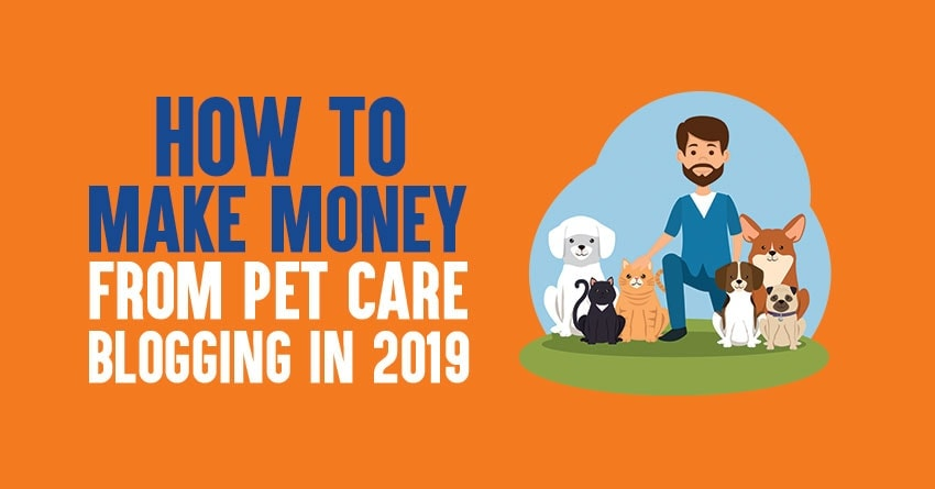 pet care blogging in 2019