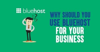 Why Should You Use Bluehost for Your Business