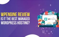 WP Engine Review: Why WPEngine Is the Best WordPress Web Hosting