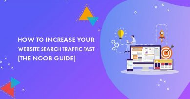 How to Increase Your Website Search Traffic Fast in 2021 [The Noob Guide]