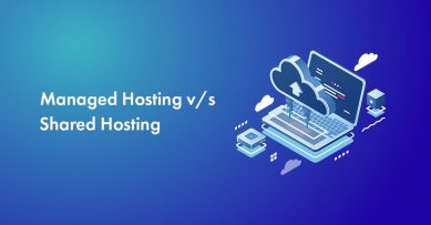 Managed Hosting vs Shared Hosting: Which Is Better Among Them?