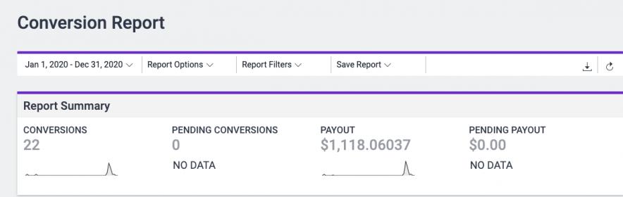 hostinger earning report