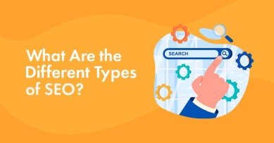 11 Types of SEO: What They Are & How to Use Them